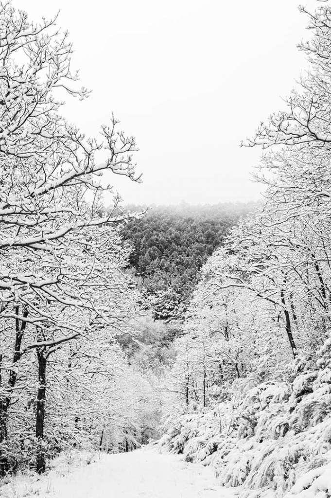 paisaje nevado montaña blanco y negro