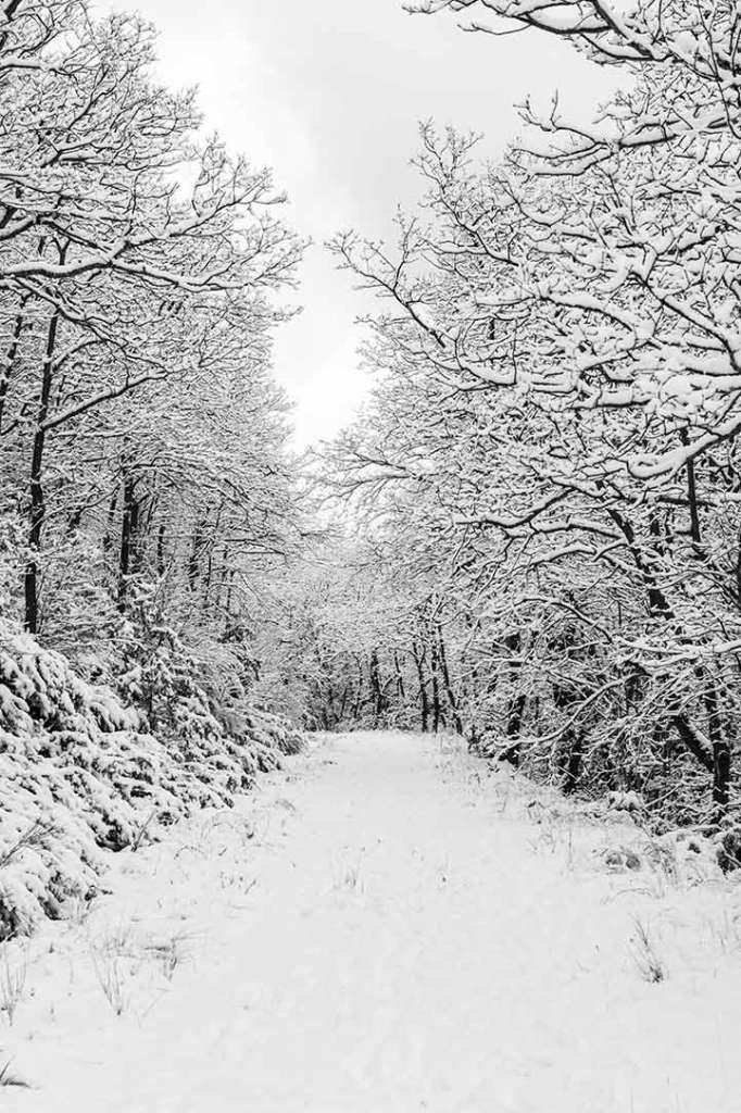 paisaje nieve montaña blanco y negro